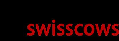 No. 12 - Google Alternative Search Engine - Swisscows