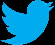 No. 17 - Google Alternative Search Engine - Twitter
