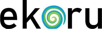 No. 18 - Google Alternative Search Engine - Ekoru